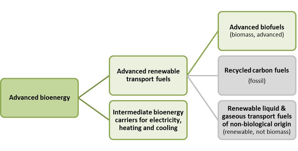 which advanced bioenergy products are there and how much is consumed?