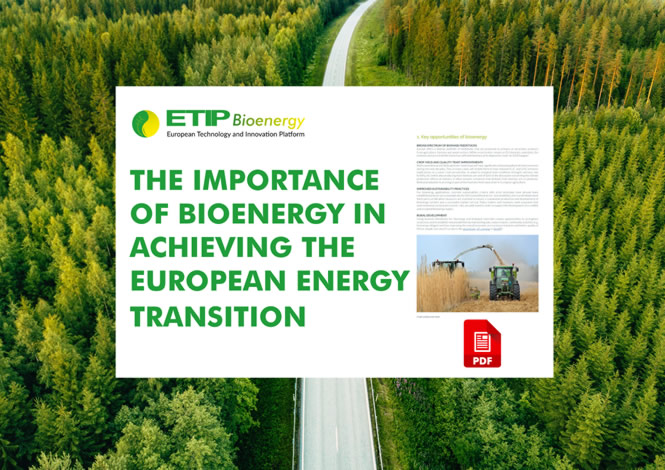 Slider-ETIP_Importance-of-Bioenergy